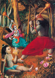 the saaga of krishna jamavanta fight