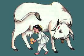 a cow born boy goukarna rishi