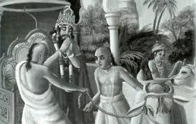 king nriga freed by krishna form the curse of sage