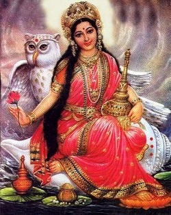 Why owl mother Lakshmi chose his vehicle