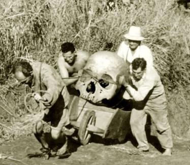 Giant human bones found worldwide clue of true indian history