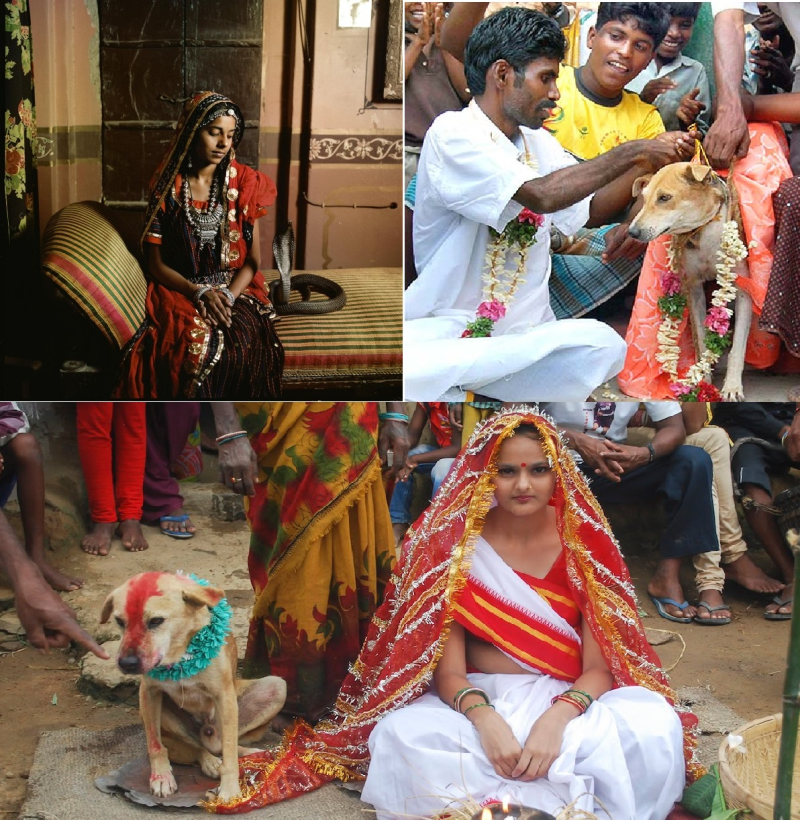 Amazing marriage tradition in india you wont believe!