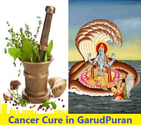Know some ayurvaidik medicines including cancer told in garud puran!
